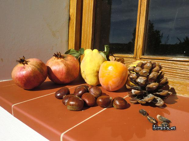 frutos de noviembre en Ibiza