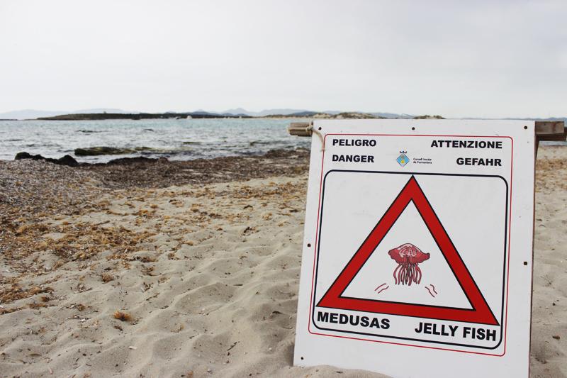En algunas playas, como ésta en Formentera, se avisa del peligro por la presencia de medusas en el agua.