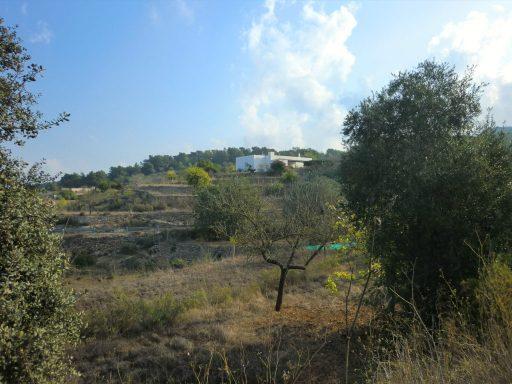 paisaje rural típico de Benimussa en Ibiza