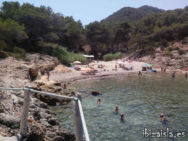 cala xuclar pequeña playa del norte de Ibiza