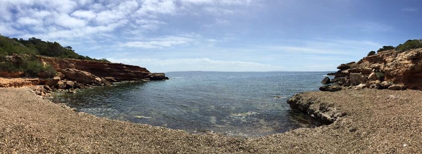 Esta pequeña cala acostumbra a acumular restos de Posidonia Oceánica. Foto: Marina Torres