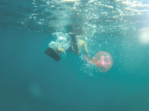 Un born a l'aigua