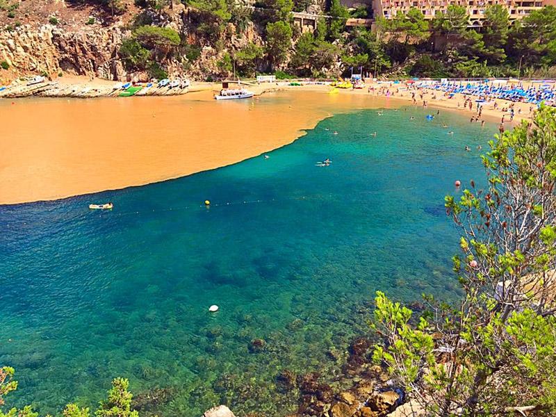 Impresionante imagen de la playa con dos colores