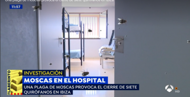 moscas hospital can misses